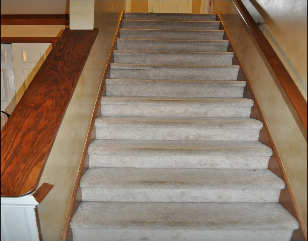 NLkHWVS Whatever They Told You About Carpet Bullnose Stair Treads Is Dead Wrong...And Here's Why