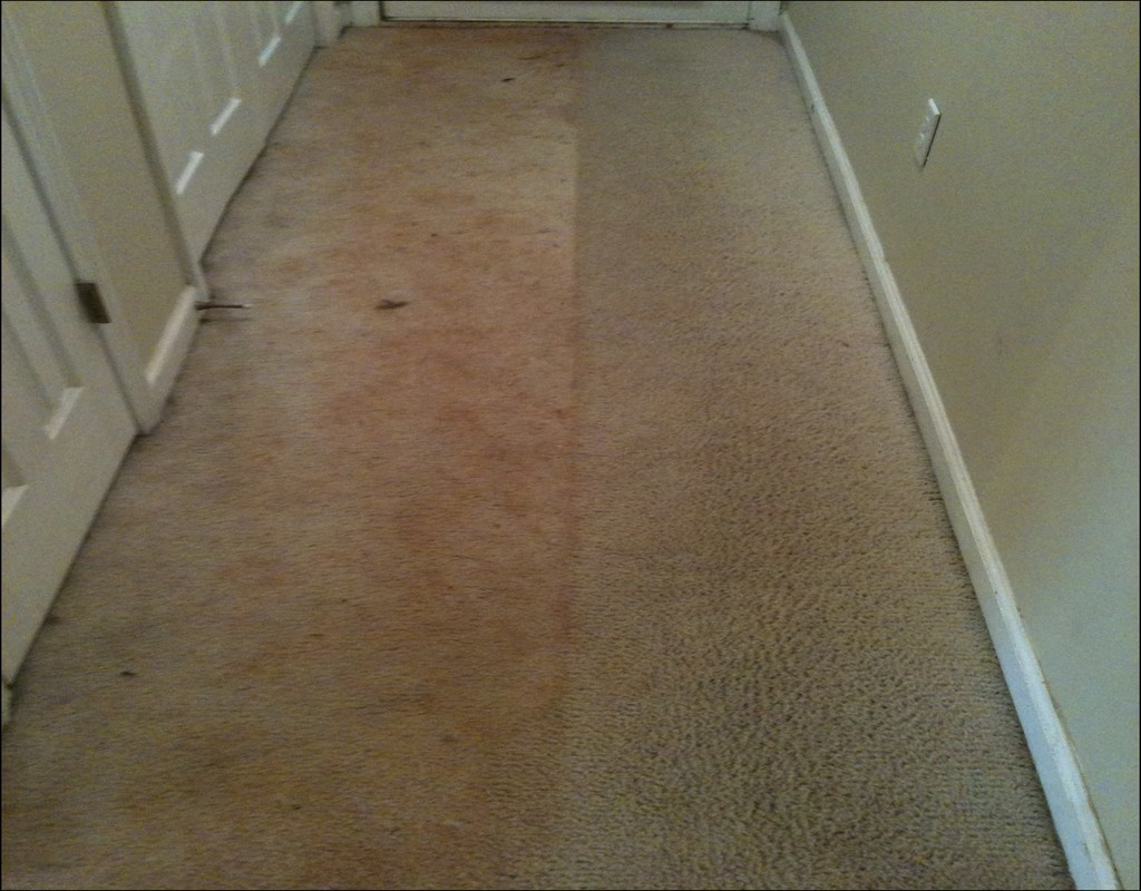 carpet-cleaning-katy-tx-reviews Carpet Cleaning Katy Tx Reviews