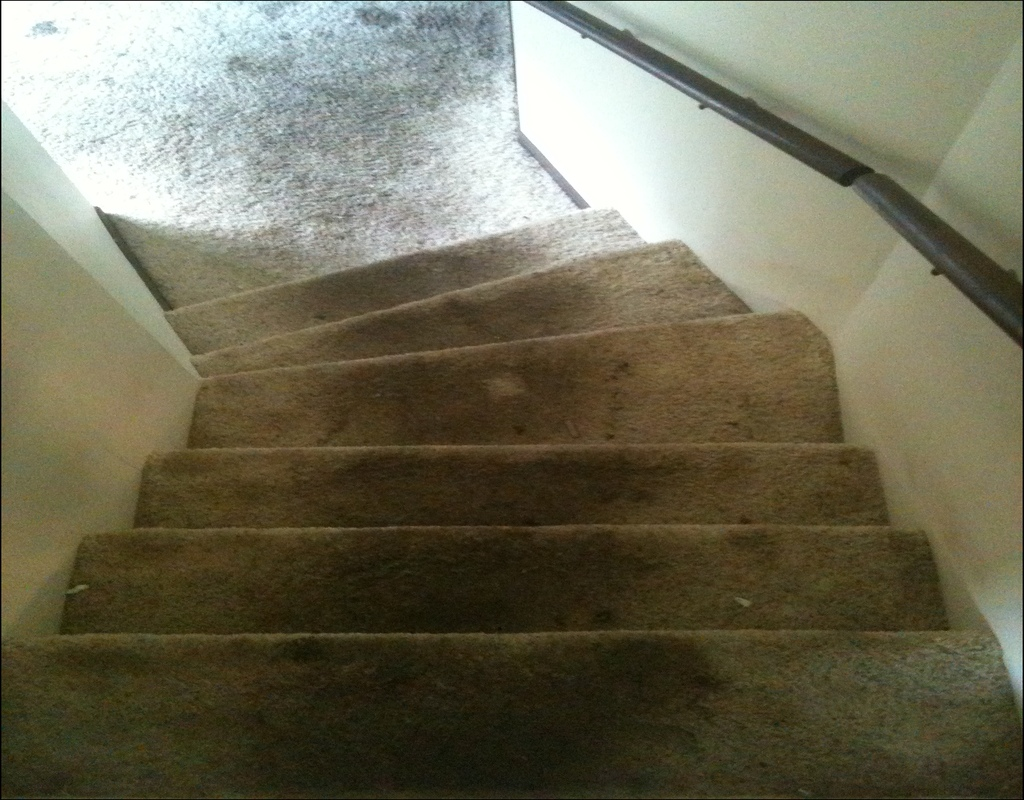 carpet-cleaning-overland-park Carpet Cleaning Overland Park