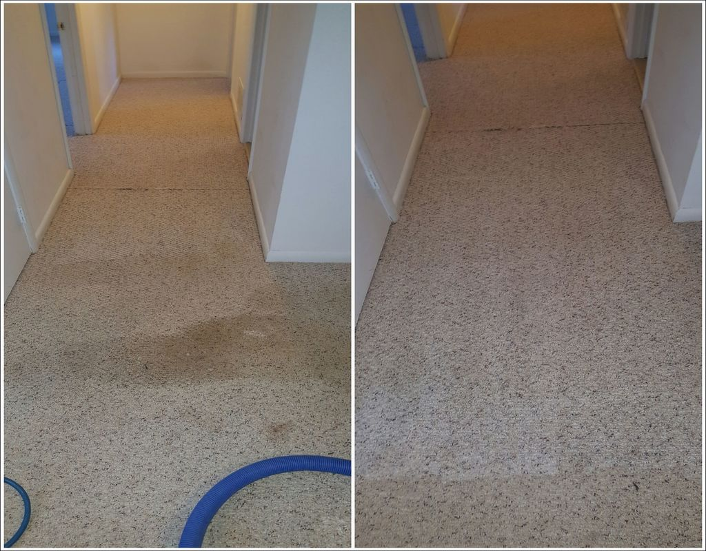carpet-cleaning-woodbridge-va Carpet Cleaning Woodbridge Va