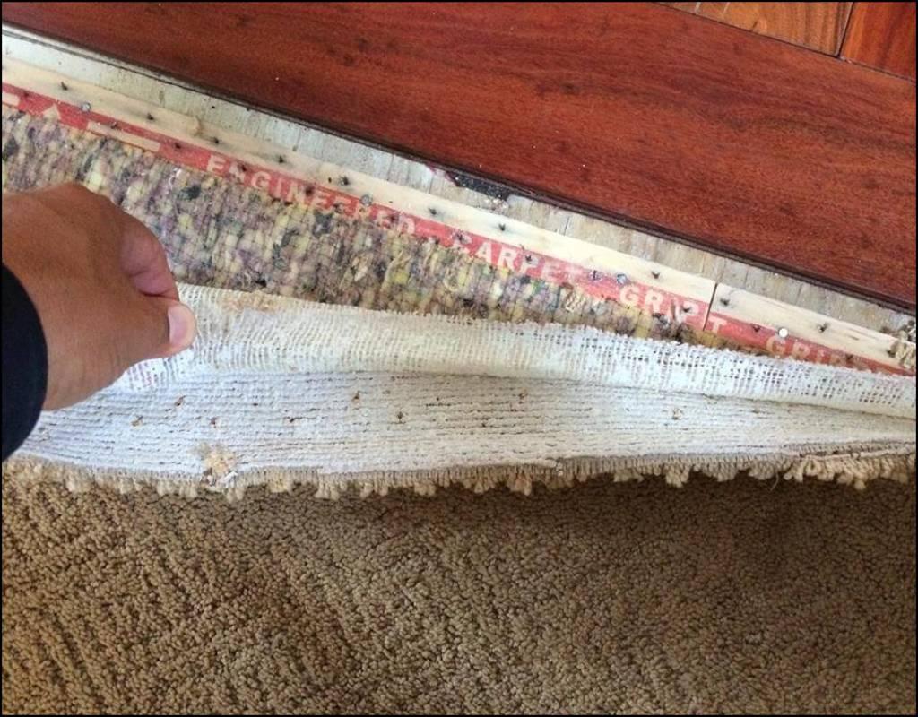 carpet-padding-for-basement Carpet Padding For Basement