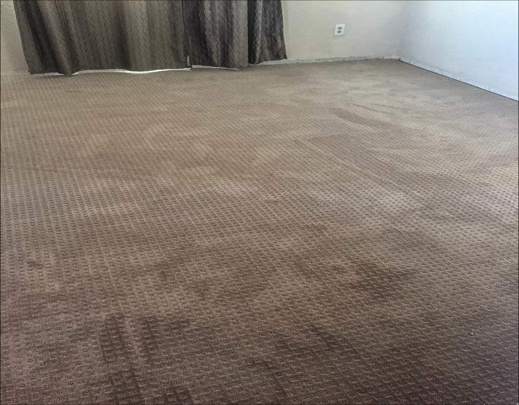 Mohawk Silk Carpet Cost Lets See Carpet New Design