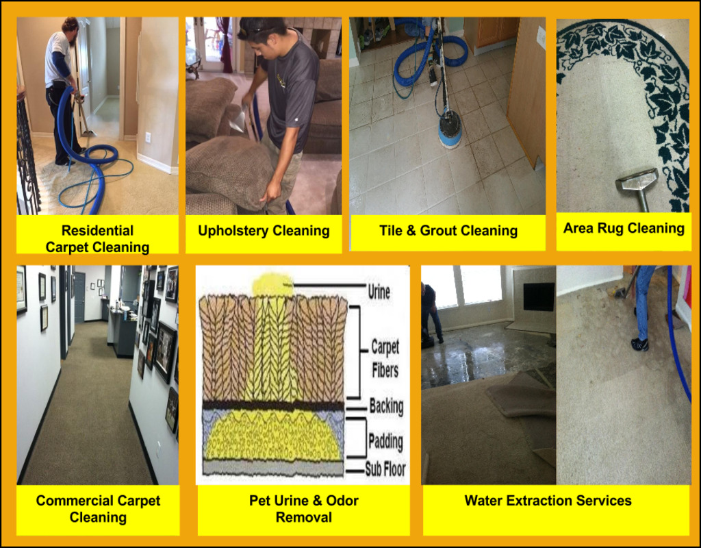 busy-bee-carpet-cleaning Busy Bee Carpet Cleaning