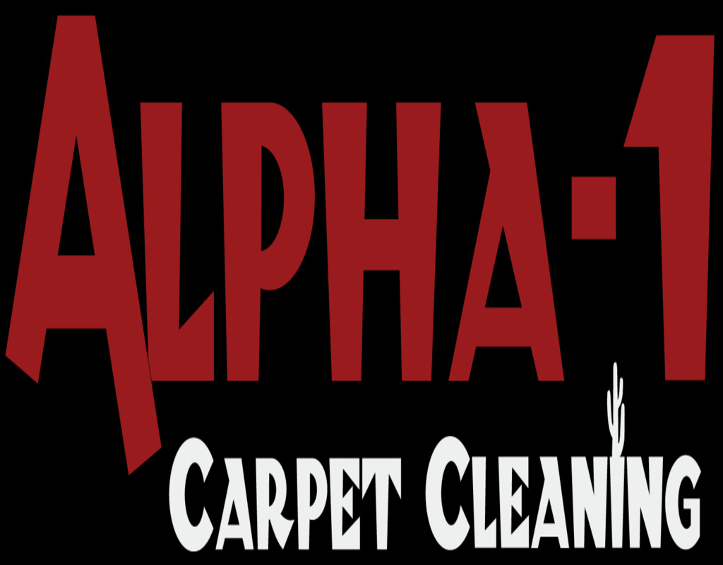 carpet-cleaning-asheville-nc Carpet Cleaning Asheville Nc
