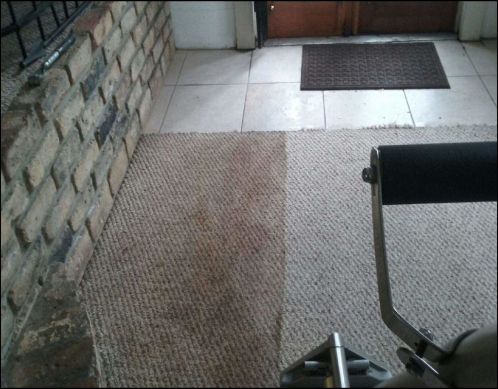 carpet-cleaning-bradenton-fl Carpet Cleaning Bradenton Fl