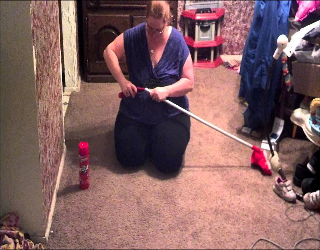 resolve-easy-clean-carpet-cleaning-system The Resolve Easy Clean Carpet Cleaning System Game