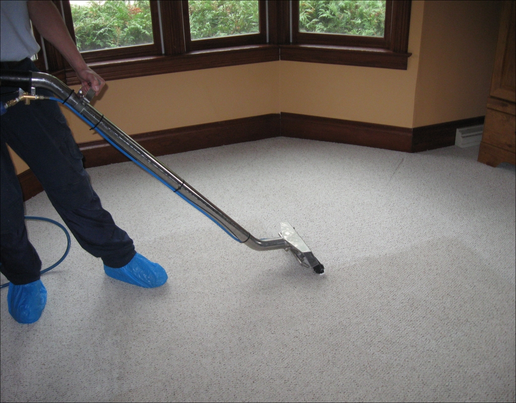 Carpet Cleaning Bellingham Wa