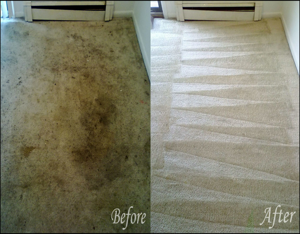carpet-cleaning-erie-pa Carpet Cleaning Erie Pa