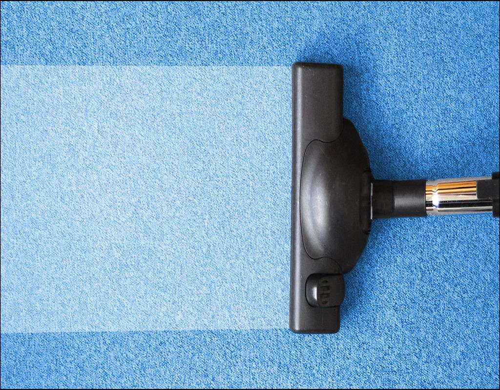 Carpet Cleaning Everett Wa