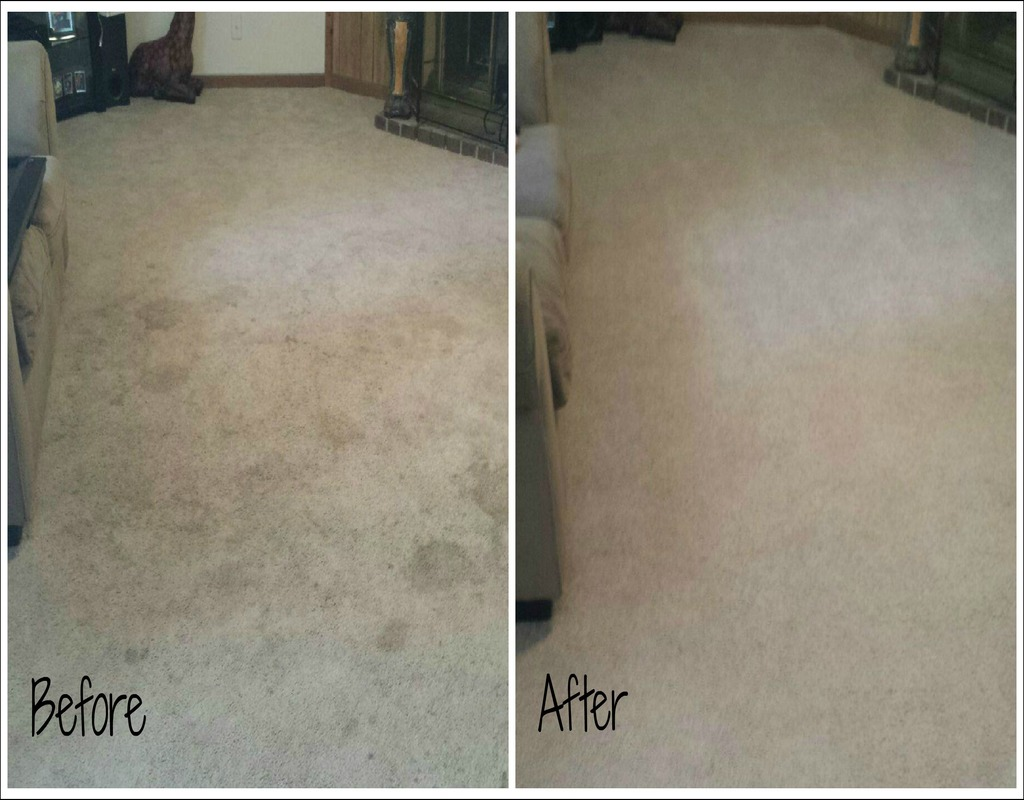 Carpet Cleaning In Knoxville Tn