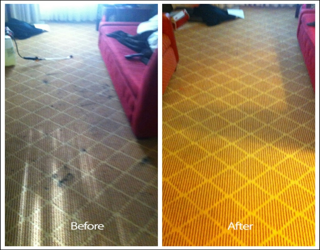 Carpet Cleaning In Livermore Ca