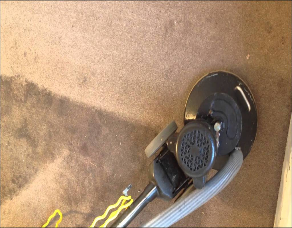 carpet-cleaning-norfolk-virginia Surprising Facts Regarding Carpet Cleaning Norfolk Virginia Exposed