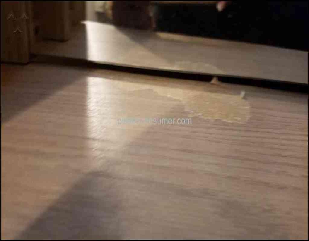 Carpet Cleaning Summerville Sc