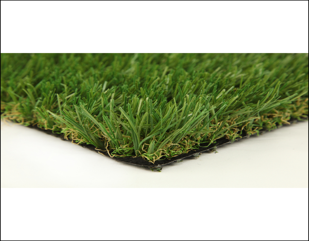 Carpet Grass Seed Lowes