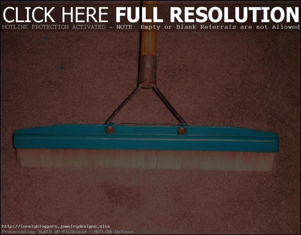 Carpet Rake Home Depot