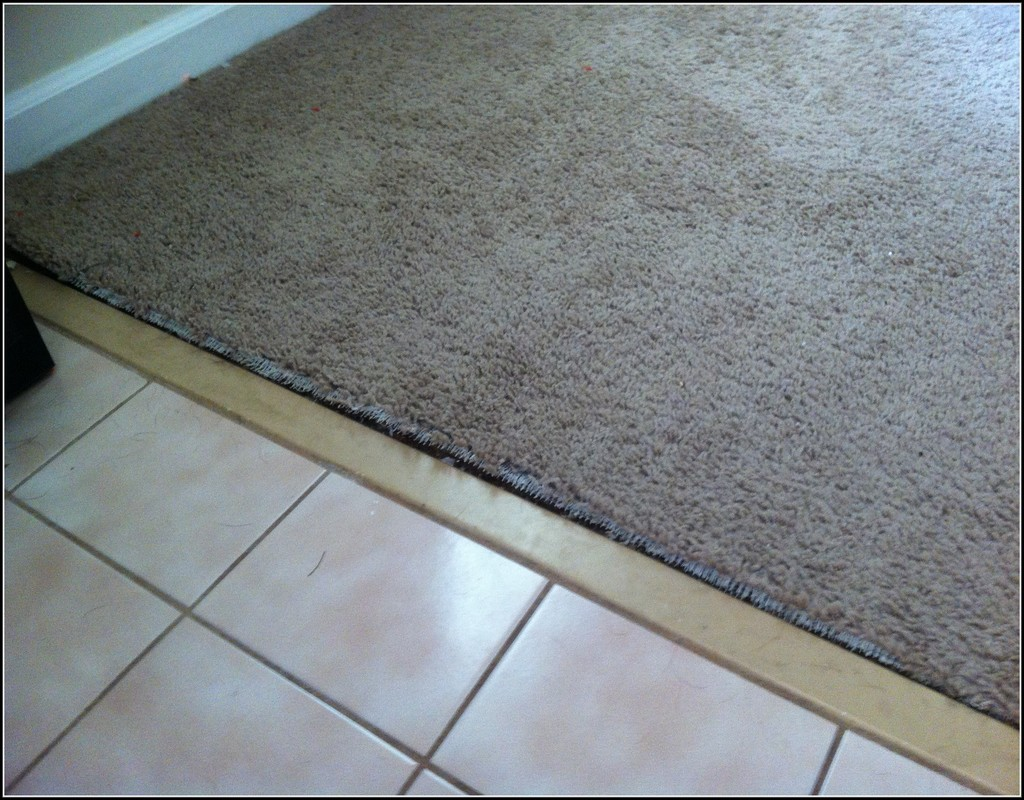 Carpet To Tile Transition Strips Rubber Cruzcarpets Com