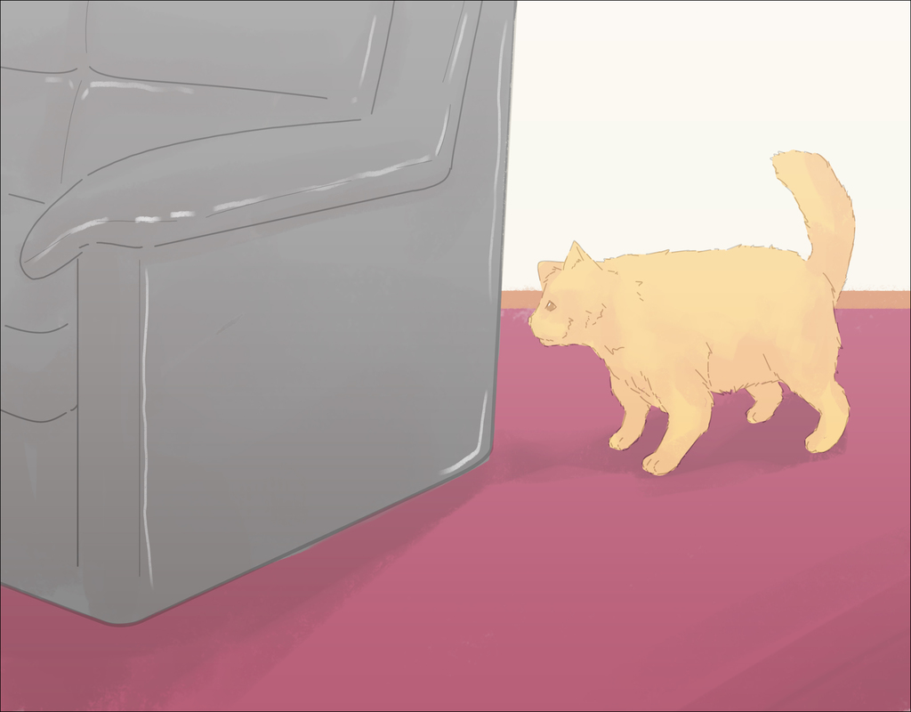 deter-cat-from-peeing-on-carpet How to Outsmart Your Pets on Deter Cat From Peeing On Carpet