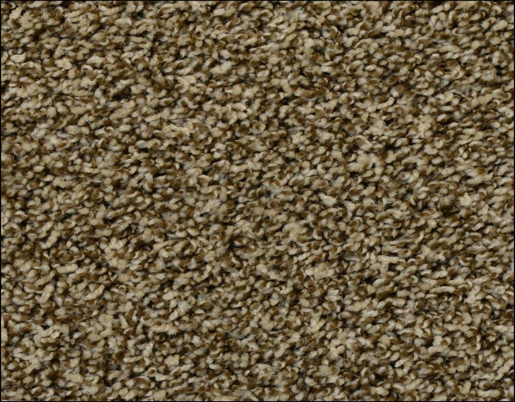 frieze-carpet-home-depot What You Must Know About Frieze Carpet Home Depot