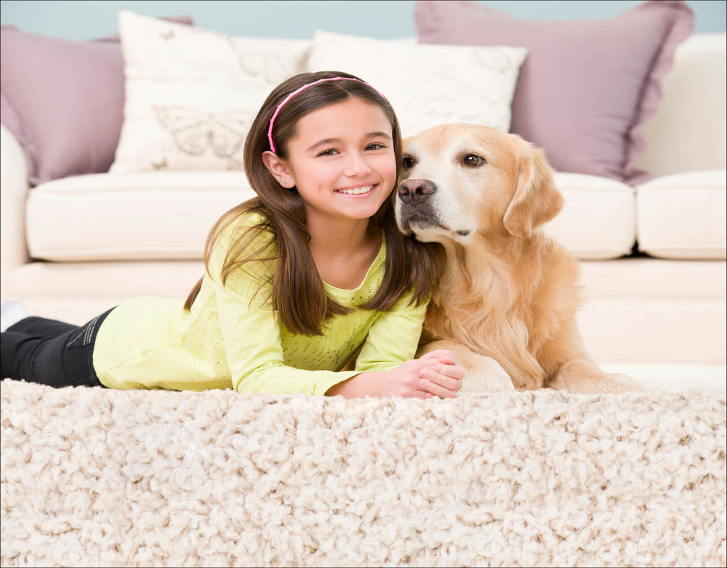 is-chem-dry-carpet-cleaning-safe The Little-Known Secrets to Is Chem-Dry Carpet Cleaning Safe