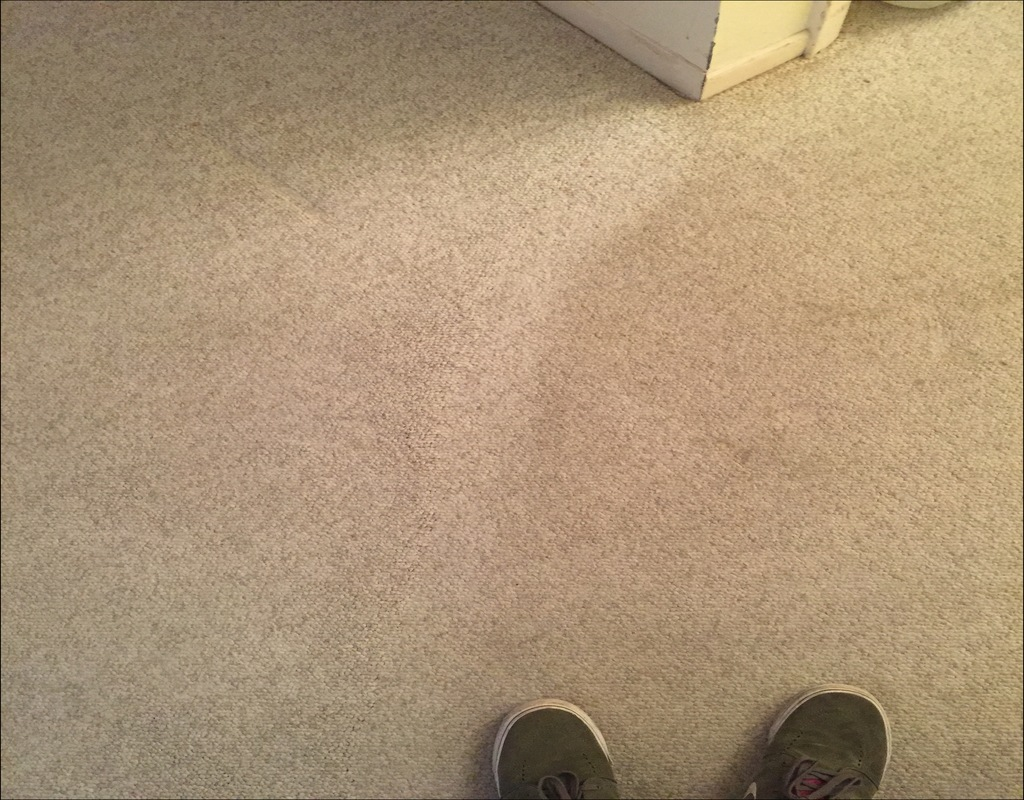 Jimmy Stuart Carpet Cleaning Ri Cruzcarpets Com