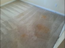Mr Steam Carpet Cleaning