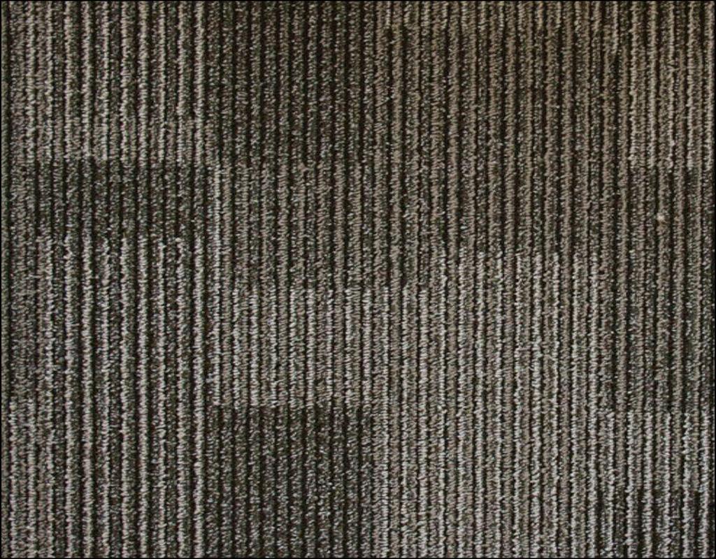 Olefin Carpet Home Depot