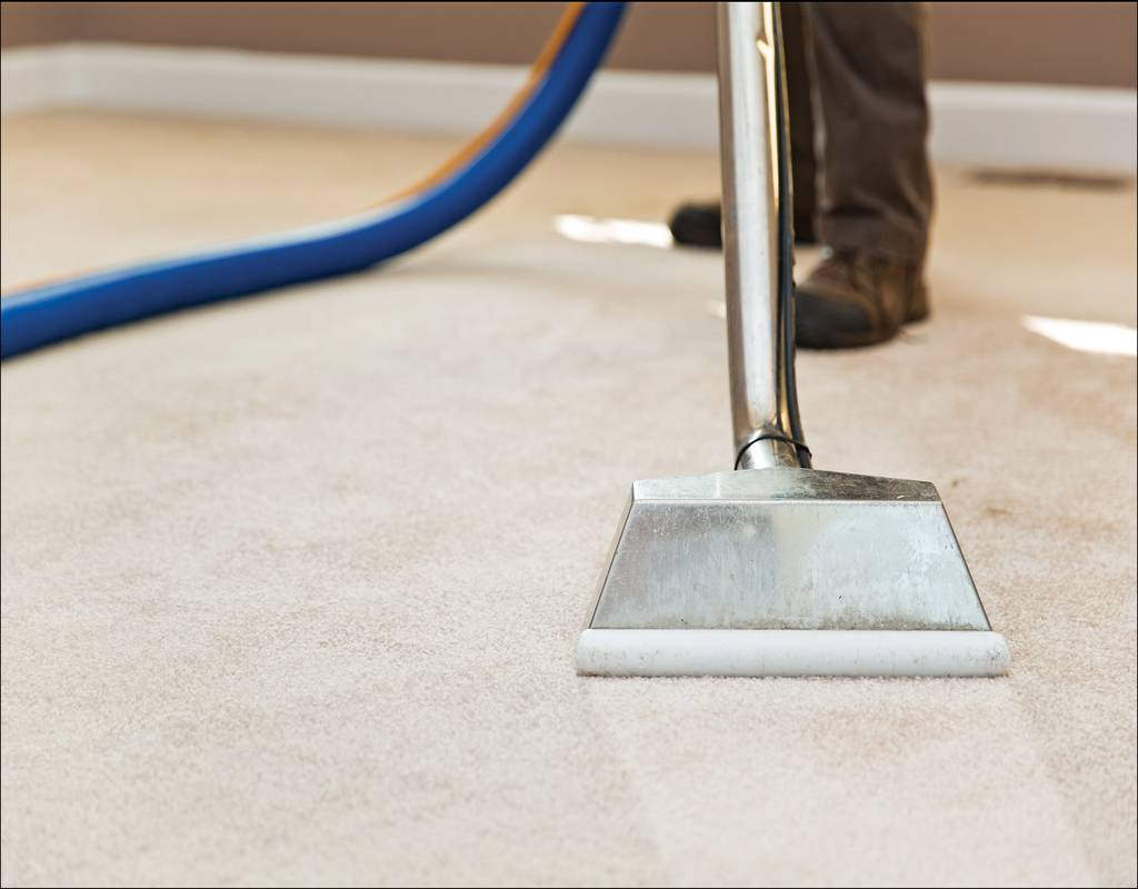 The Steam Dry Carpet Cleaning Milwaukee Stories