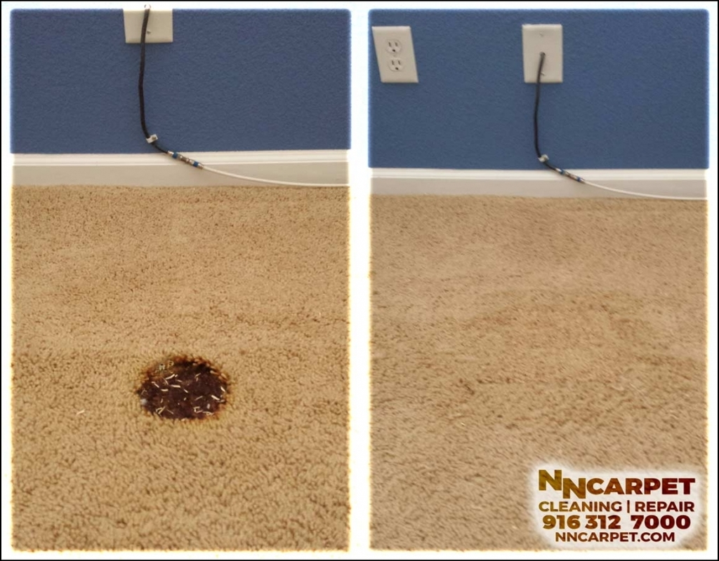 Carpet Cleaning Elk Grove
