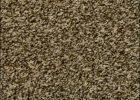 Frieze Carpet Home Depot