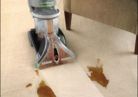 Best Carpet Cleaning Machine For Pet Urine