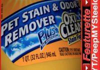 Best Carpet Shampoo For Pet Urine