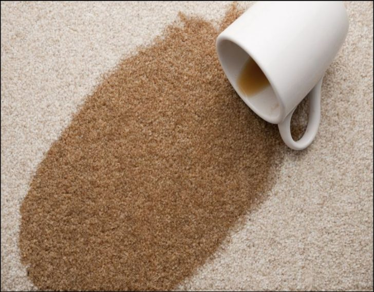 Permalink to Brief Article Teaches You The Ins and Outs of Best Coffee Stain Remover For Carpet and What You Should Do Today