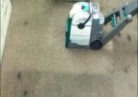 Bissell Big Green Carpet Cleaner Reviews