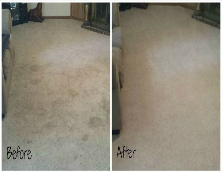 Permalink to One of the Most Incredibly Disregarded Systems for Carpet Cleaners Knoxville Tn