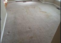Carpet Cleaning Arlington Va