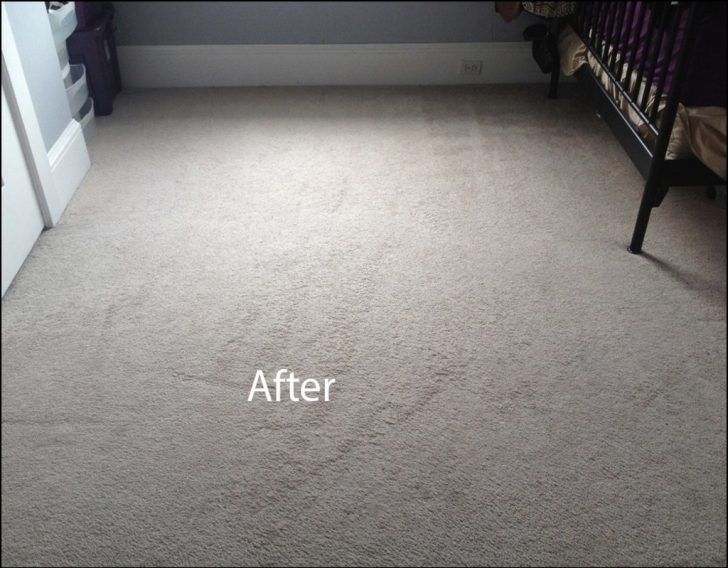 Permalink to Carpet Cleaning Delray Beach Florida