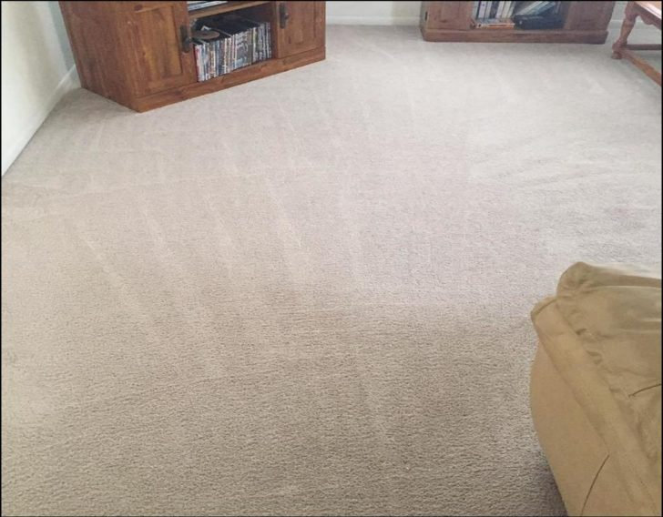 Permalink to Carpet Cleaning In Melbourne Fl