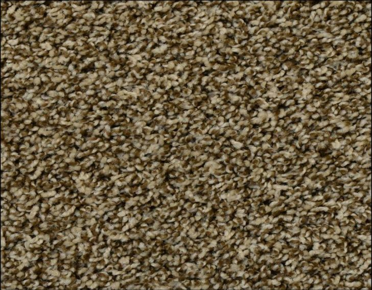 Permalink to What You Must Know About Frieze Carpet Home Depot