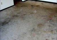 How To Clean Heavily Soiled Carpet