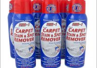 Lifter 1 Carpet Stain Remover