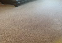 Mohawk Aladdin Carpet Reviews