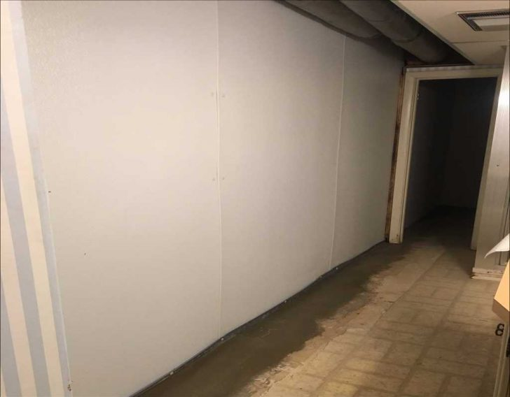 musty smell in basement carpet. Black Bedroom Furniture Sets. Home Design Ideas