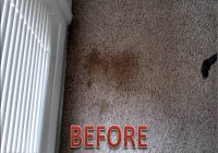 Oxy Clean Carpet Stains